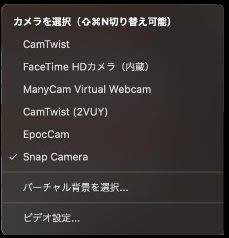 zoom snapcamera works